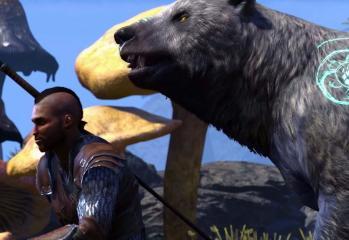 The Elder Scrolls Online: Morrowind Warden